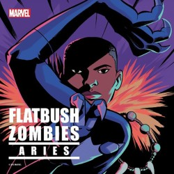 flatbush-zombies-aries-1479229845-compressed